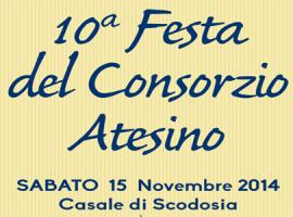 10a Festa del Consorzio Atesino