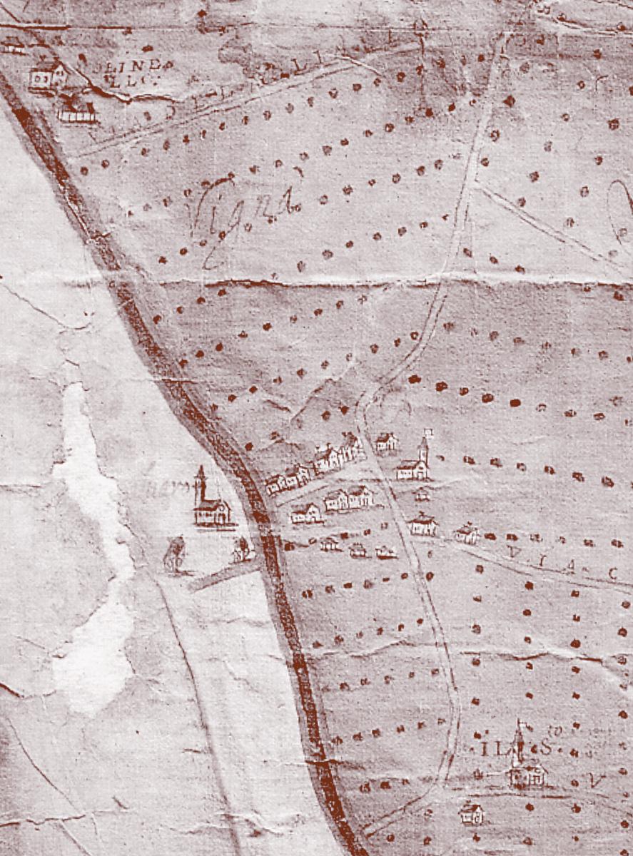 Pianta-Zona-Bassa-Padovana