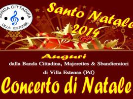 Concerto di Natale a Villa Estense